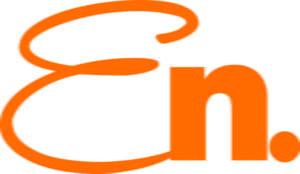 ENicon_ORANGE_Pos.jpg